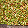 Collection of huge amount of apples — Stock Photo