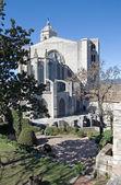 Catedral de zhirony — Foto Stock