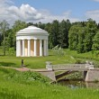 Summer garden in Pavlovsk - Stock Photo