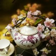 Flowers and chinaware — Stock Photo