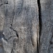 Royalty-Free Stock Photo: The texture of old wood