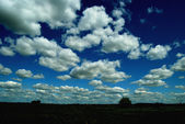 The sky with clouds — Stock Photo