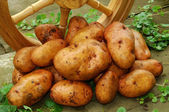 Potatoes with wooden wheels — Stock Photo