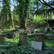 Graveyard — Stock Photo #3099986