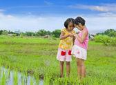 Two cute asian girls — Stock Photo
