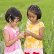 Asian girls with grasshopper — Stock Photo