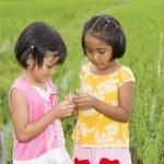 亚洲女孩与蚱蜢 — 图库照片