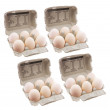 Eggs in Egg Cartons — Stock Photo