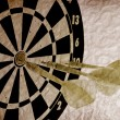 Dart Board — Stock Photo #3214169