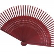 Chinese Folding Fan — Foto de Stock
