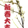Greetings and  Plum Blossom - Stock Photo