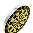 Dart Board — Stock Photo #3264746