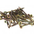 Pile of Screws — Stock Photo #3265136