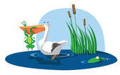 Frog and Pelican — Stock Vector