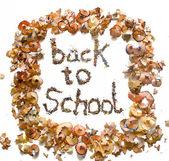 Wieder in die schule — Stockfoto