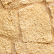Limestone wall. — Stock Photo #2921325