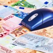 Computer mouse over Euro banknotes. — Stock Photo #3171552