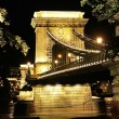 Budapest chain bridge. - Stock Photo