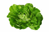 Green lettuce isolated over white — Stock Photo