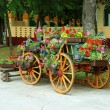 Decorative cart with flowerpots — Photo #2733564