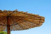 Stro paraplu — Stockfoto