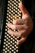 Musician hand playing accordion — Stock Photo
