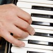 Royalty-Free Stock Photo: Musician hand playing accordion