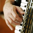Musician hand playing accordion — Stock Photo