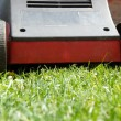 Mower in grass — Foto Stock