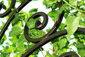 Forge de fer dans les feuilles vertes — Photo