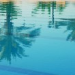 Palms reflection in pool — Stock Photo #2966297
