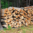 Royalty-Free Stock Photo: Wood pile