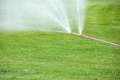 Sprinkling on grass from damaged hose — Stock Photo