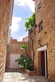 Old stone town in Montenegro - Budva — Stock Photo