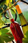 Wine bottles between vine leaves — Stock Photo