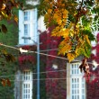 Autumn urban view — Stock Photo