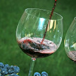 Pouring red wine in glass — Stock Photo