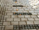 Pavement texture — Stock Photo