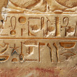 Egyptian Hieroglyphics — Stock Photo #3694610