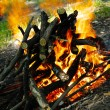 Burning fire — Stockfoto