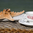 Stock Photo: Coffee cup, newspaper and starfish