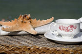 Coffee cup, newspaper and starfish — Stock Photo