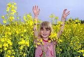 Little girl in rapefield — Stock Photo