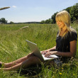Yong woman with laptop on a meadow — Stock Photo #3404911