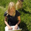 Yong woman with laptop on a meadow — Stock Photo #3404979