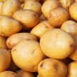 Yukon Gold Potatoes Vertical — Stock Photo