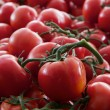 Vine Tomatoes — Stock Photo