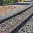 Railroad track curve — Stock Photo