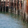 Stock Photo: Pier Bumpers
