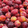 Stock Photo: Red Plums